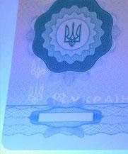 Диплом - свечение УФ (Первомайск)